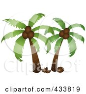 Two Palm Trees With A Coconut On The Ground