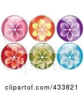Digital Collage Of Shiny Round Colorful Flower Icons