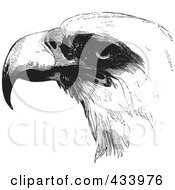 Royalty Free RF Clipart Illustration Of A Black And White Sketch Of An Eagle Face by BestVector