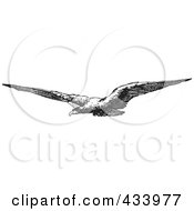 Royalty Free RF Clipart Illustration Of A Black And White Sketch Of A Flying Eagle by BestVector