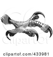 Royalty Free RF Clipart Illustration Of A Black And White Sketch Of Eagle Talons 1