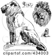 Royalty Free RF Clipart Illustration Of A Digital Collage Of Vintage Black And White Lion Sketches