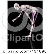 An Xray Of A Female Skeleton Bending Over