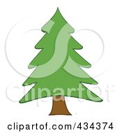 Royalty Free RF Clipart Illustration Of A Pine Tree 2