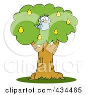 Blue Partridge In A Pear Tree