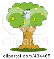 Royalty Free RF Clipart Illustration Of A Blue Partridge In A Pear Tree by Hit Toon