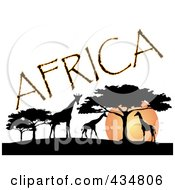 Royalty Free RF Clipart Illustration Of Africa Text Silhouetted Giraffes And Trees Against An African Sunset
