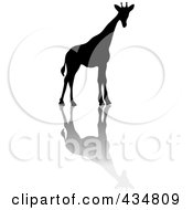 Royalty Free RF Clipart Illustration Of A Black Silhouetted Giraffe And Shadow by Pams Clipart