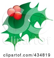 Royalty Free RF Clipart Illustration Of Holly Leaves And Berries 1