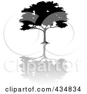 Royalty Free RF Clipart Illustration Of A Black Silhouetted African Umbrella Thorn Tree With A Shadow
