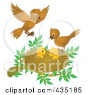 Royalty Free RF Clipart Illustration Of Birds Tending To Their Young by Alex Bannykh