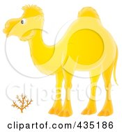 Royalty Free RF Clipart Illustration Of A Yellow Camel by Alex Bannykh