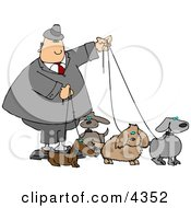 Businessman Walking Four Dogs On Leashes Clipart