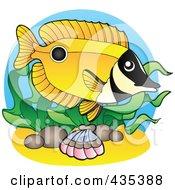 Logo Of A Marine Fish 5
