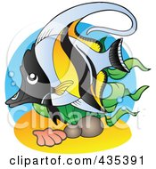 Logo Of A Marine Fish 4