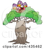 Three Baby Vultures In A Nest Atop A Tree