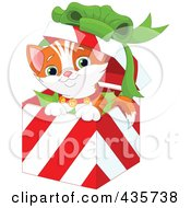 Royalty Free RF Clipart Illustration Of A Cute Christmas Kitten Popping Out Of A Gift Box