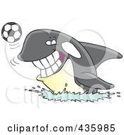 Royalty Free RF Clipart Illustration Of An Orca Whale Playing With A Soccer Ball by toonaday