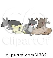 Group Of Five Dogs Clipart