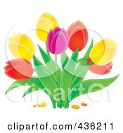 Royalty Free RF Clipart Illustration Of A Colorful Tulip Plant by Alex Bannykh