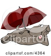 Happy Summertime Dog Laying At The Beach Under An Umbrella Clipart