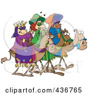 Royalty Free RF Clipart Illustration Of Three Wise Kids Wearing Shades And Riding Camels by toonaday