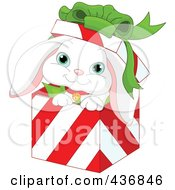 Royalty Free RF Clipart Illustration Of A White Rabbit In A Red And White Striped Christmas Gift Box by Pushkin