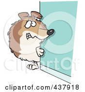 Royalty Free RF Clip Art Illustration Of A Timid Collie Dog Looking Around A Corner by toonaday