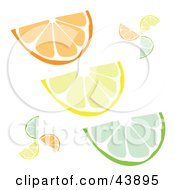 Clipart Illustration Of Wedge Slices Of Oranges Lemons And Limes On White by Arena Creative