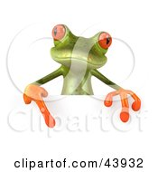 Cute 3d Green Tree Frog Pointing Down At A Blank Sign