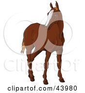Clipart Illustration Of A Brown Horse Standing And Looking Left by Paulo Resende