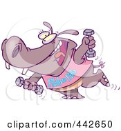 Royalty Free RF Clip Art Illustration Of A Cartoon Flab To Fab Fitness Hippo by toonaday