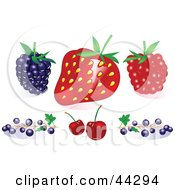 Clipart Illustration Of A Blackberry Strawberry Raspberry Blueberries And Cherries by toonster