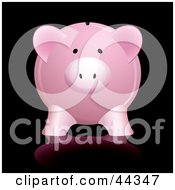 Pink Piggy Bank With Shadow Against Black Background