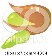 Clipart Illustration Of A Pistachio Nut And Shell