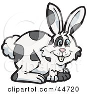 Clipart Illustration Of A Spotted Cloned Rabbit With A Dalmatian Coat Pattern by Dennis Holmes Designs