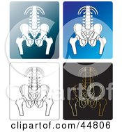 Royalty Free RF Clipart Illustration Of A Digital Collage Of X Rays Of A Human Pelvis
