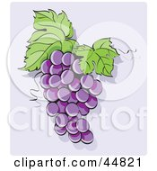 Royalty Free RF Clipart Illustration Of A Bunch Of Purple Hanging Grapes With Two Leaves
