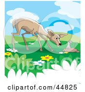 Royalty Free RF Clipart Illustration Of A Wild Rat Talking To A Deer In A Meadow by Lal Perera