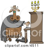 Cow Pianist Playing A Piano Clipart