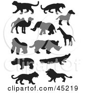 Digital Collage Of Profiled Black Silhouetted Wildlife