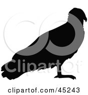 Royalty Free RF Clipart Illustration Of A Profiled Black Hawk Silhouette by JR