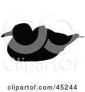 Profiled Black Nesting Seagull Silhouette