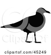 Royalty Free RF Clipart Illustration Of A Profiled Black Gull Silhouette by JR