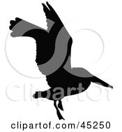 Profiled Black Flying Bird Silhouette