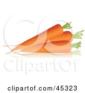 Three Thick Organic Carrots