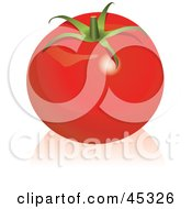 Royalty Free RF Clipart Illustration Of A Shiny Organic Red Tomato by Oligo