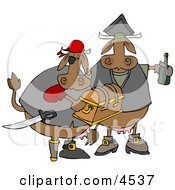 Cow Pirates Carrying Treasure Chest And Bottle Of Rum Clipart