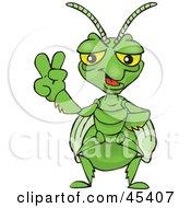 Peaceful Praying Mantis Gesturing The Peace Sign