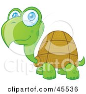 Royalty Free RF Clipart Illustration Of A Friendly Blue Eyed Turtle Smiling by John Schwegel